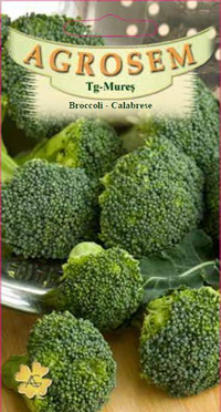 Broccoli - Calabrese  2 gr.