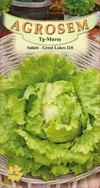 Salată - Great Lakes 118  2 gr.