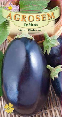 Vinete - Black Beauty 2 gr.